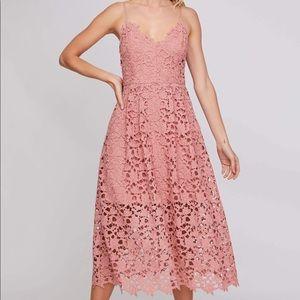 ASTR The Label Lace Midi Dress - Blush